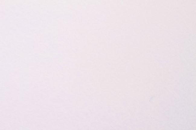 Filc biały 07071/050